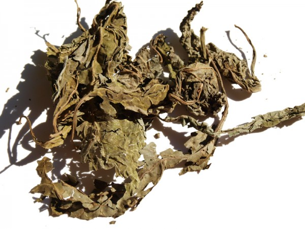 A few dried-out Salvia divinorum leaves.