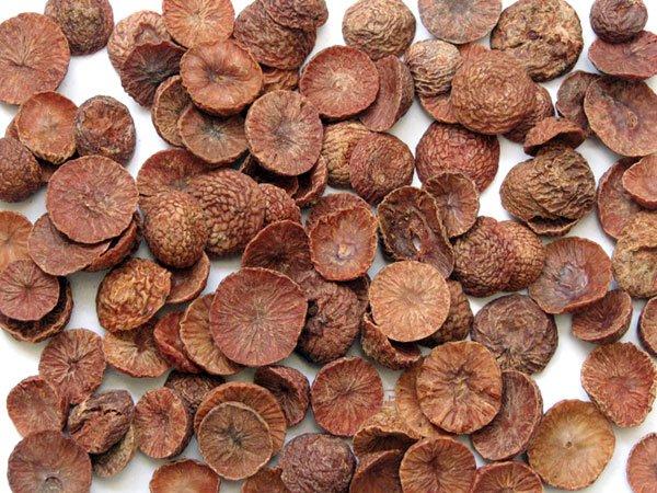 Sun-dried Areca nuts (betel nuts).