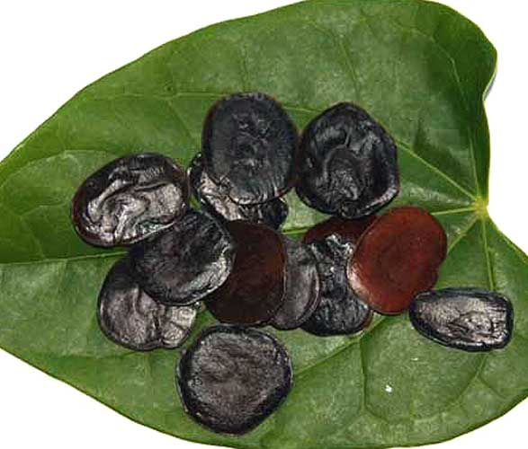 Roasted Yopo beans on a leaf.