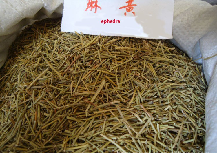 A picture of dried Ephedra sinica twigs. This Ephedra tea preparation is the most common for to consume Ephedra. Just add boiling hot water and let it sit for 10 - 15 minutes.