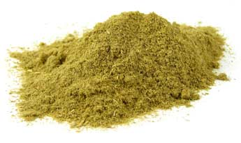 ephedra_extract_powder