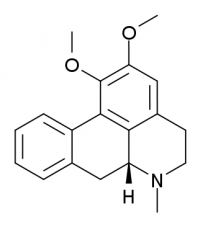 The structure of the nuciferine compound - one of the active ingredients in blue lotus (Nymphaea caerulea).