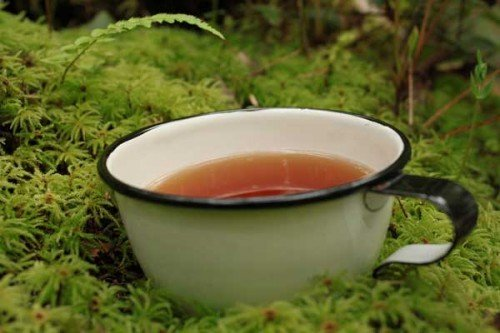 A picture of a cup of skullcap tea.
