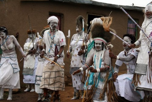 A picture of Xhosa people performing a traditional ritual dance in Mgwali village, Eastern Cape of South Africa. Their traditions attach great values to Silene Capensis (Xhosa dream herb, African dream root).