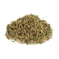 A picture of dried damiana - great, if you want to try smoking damiana. You can also brew it in a tea!