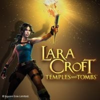 This is the logo of Tomb Raider Lara Craft Temples and Tombs slot. It's 200x200 pixels. Click on the picture to be taken to the page where you can play with the game.