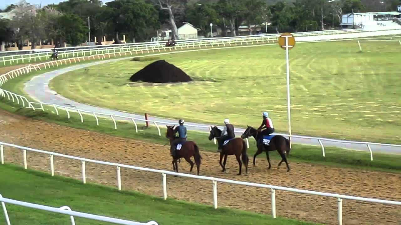 This is a picture of Garrison Savannah race track in Barbados. On this page you can read about the poker, bingo, sports betting, casino gambling, lottery, cryptocurrency wagering laws, rules, taxation, licensing, age requirements.