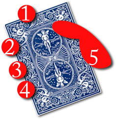 On the picture you can see the mechanics grip illustrated, there's a good chance, that a dealer who uses this grip knows how to cheat at poker. The mechanics's grip is a sure sign of cheating. You can read about cheating in card games using bottom dealing, and the mechanics grip to the right of this picture..