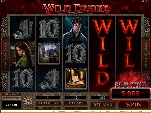 The picture shows you the bonus feature called Wild Desire in the Immortal Romance online slot game