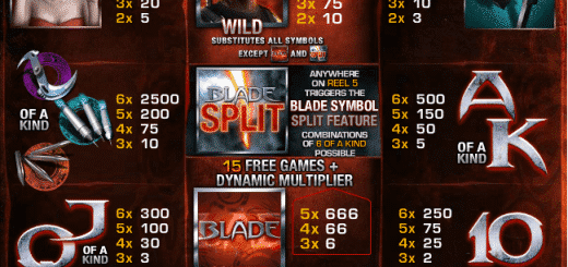 The picture shows you the paytable and the winning combinations of the Blade slot
