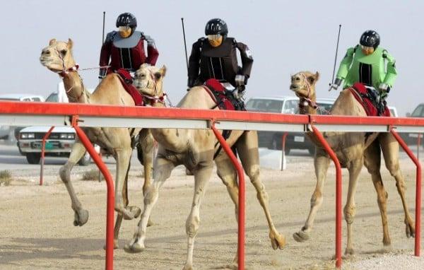 Qatar Online Casinos – Gambling in Qatar