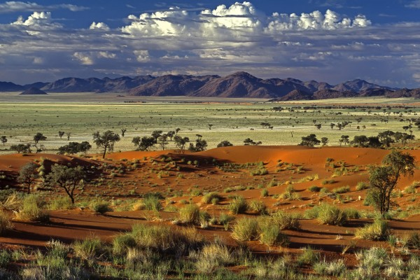 The picture shows you a savanna in Namibia. This is the header image of my Namibia gambling and casino guide. Gambling in Namibia is not regulated.
